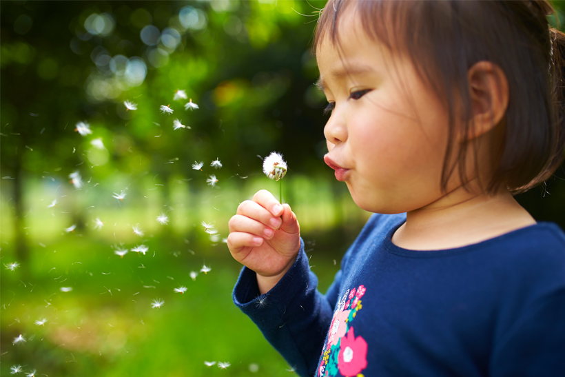 Blowing a Dandelion