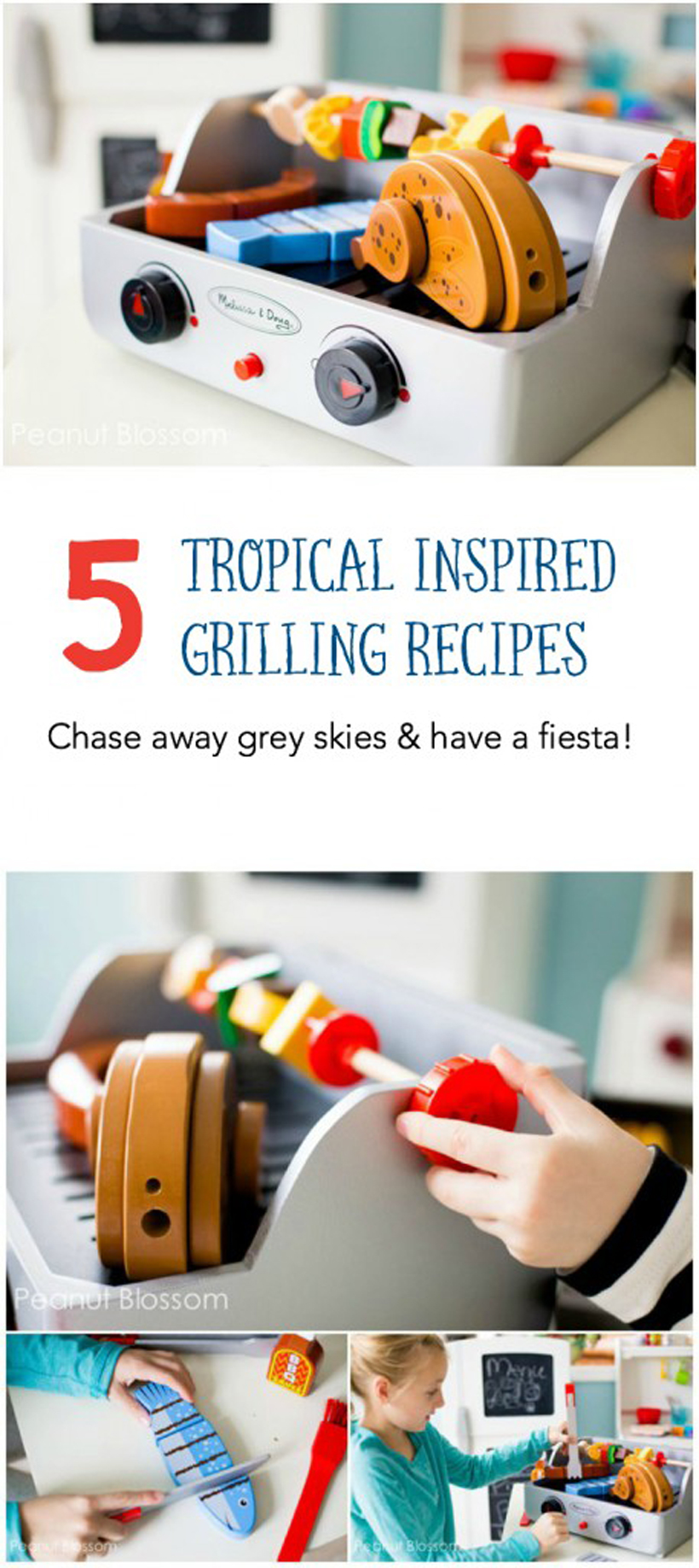 Dreary Days Tropical Grill Recipes Pin