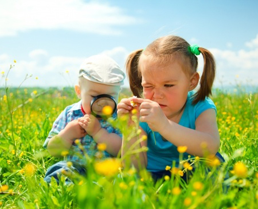 5 flower facts for kids