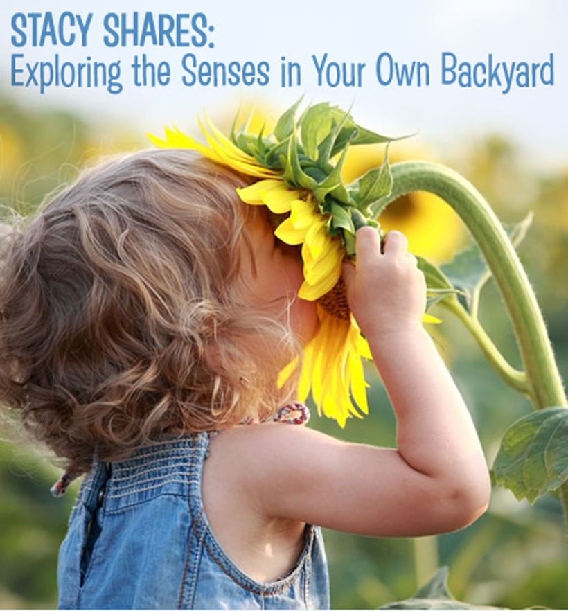 Exploring the Senses in Your Own Backyard