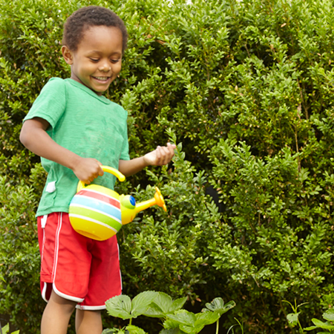 Tips for a Successful Family Garden