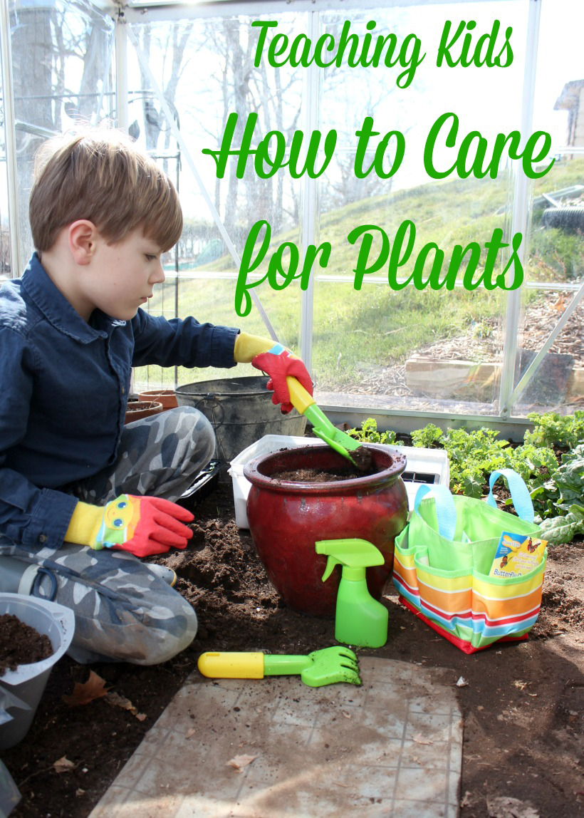 5 Tips To Teach Kids How To Care For Plants
