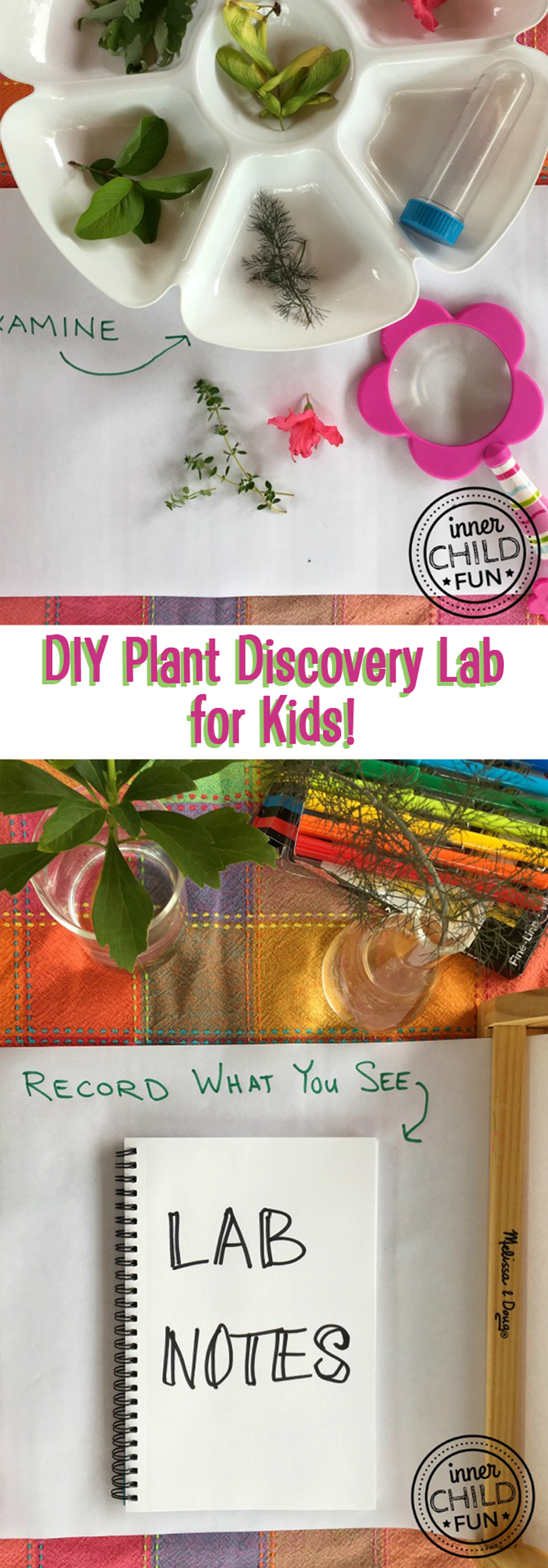 Plant Discovery Lab Screen-Free Week
