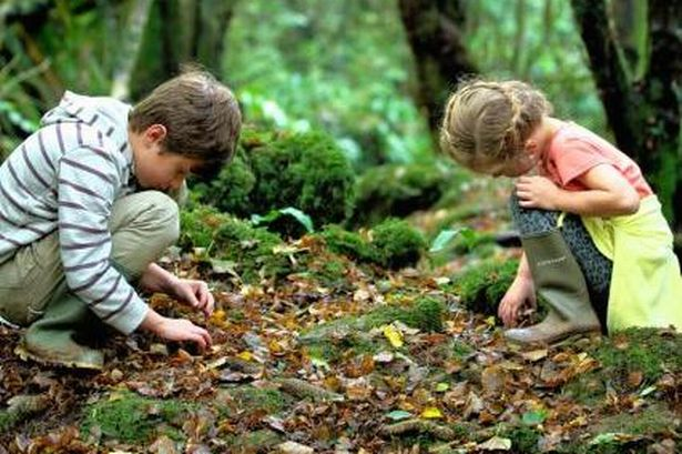 kids in nature collecting