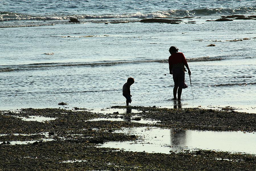 Beachcombing Persistence