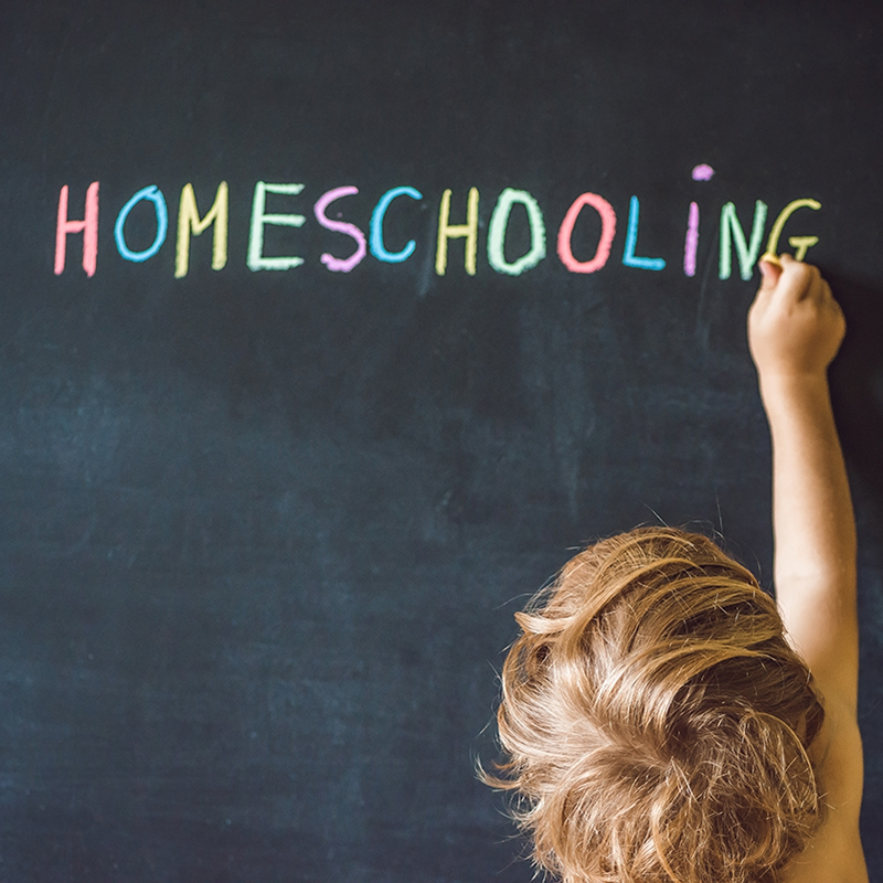 Playful Learning Ideas for School at Home