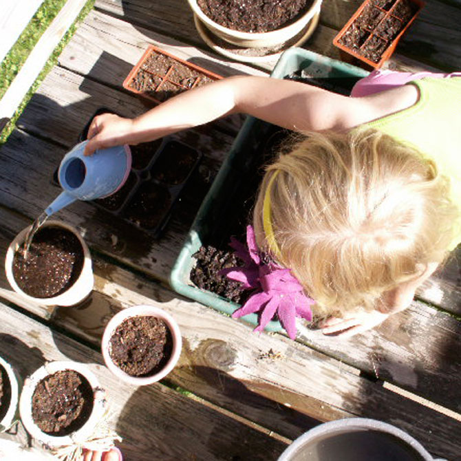 Get Picky Eaters to Try Healthy Options: START A GARDEN