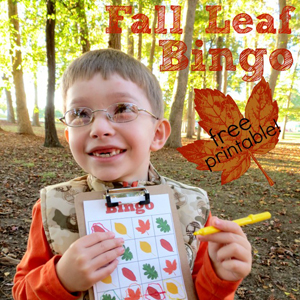 Fall Leaf Bingo (with Printable!)